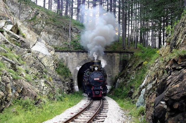 Belgrade Day Tours: take the Old Serbia and Shargan Train.