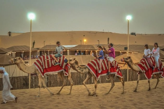 Tourists riding camels at dusk in Dubai.
