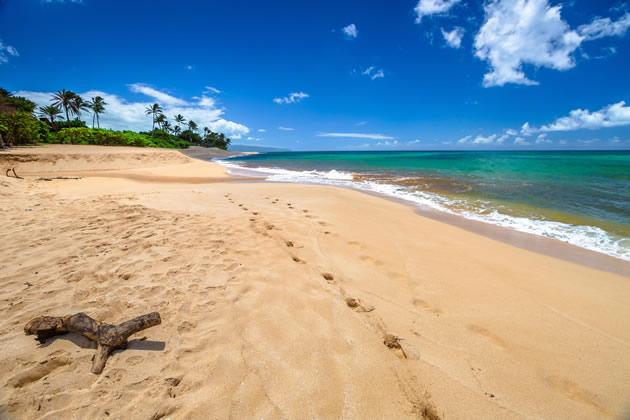 A beautiful empty beach on Hawaii's North Shore.