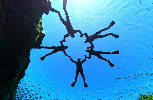 Reykjavik Day Tours: Snorkelers form a circle off of the coast of Iceland.
