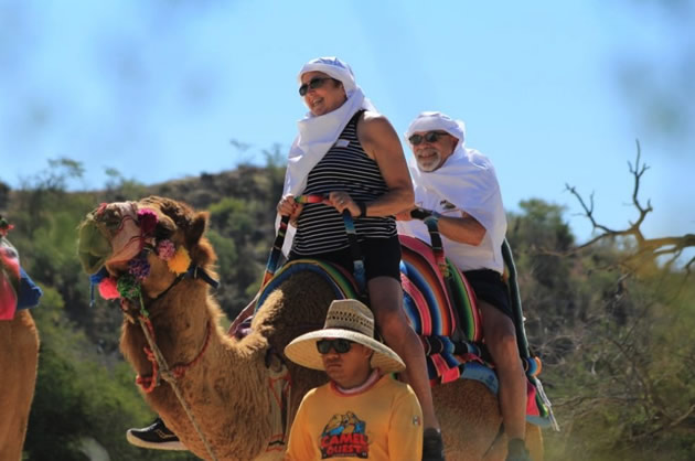Tourists on a camel in El Tule Canyon.