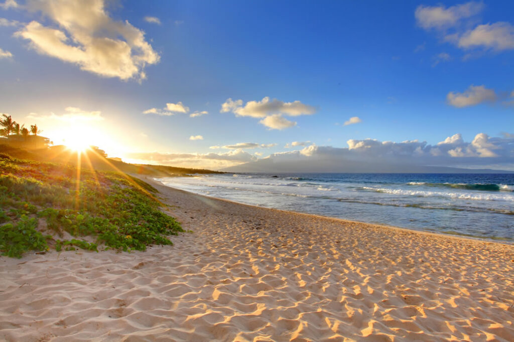 North American Day Tours: Visit Maui in amazing Hawaii.